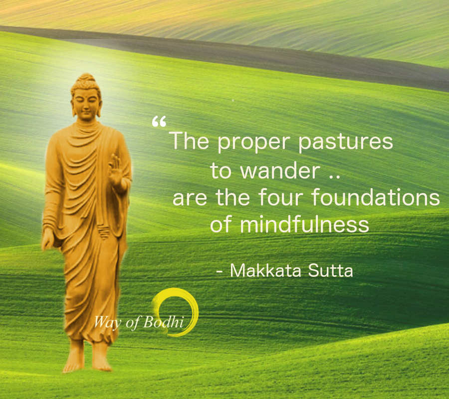 Makkata Sutta - The proper and improper pasters to wander