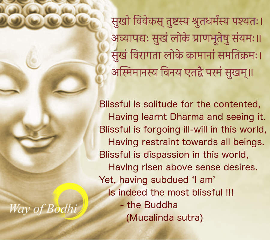 Dharma Quote - Blissful is solitude