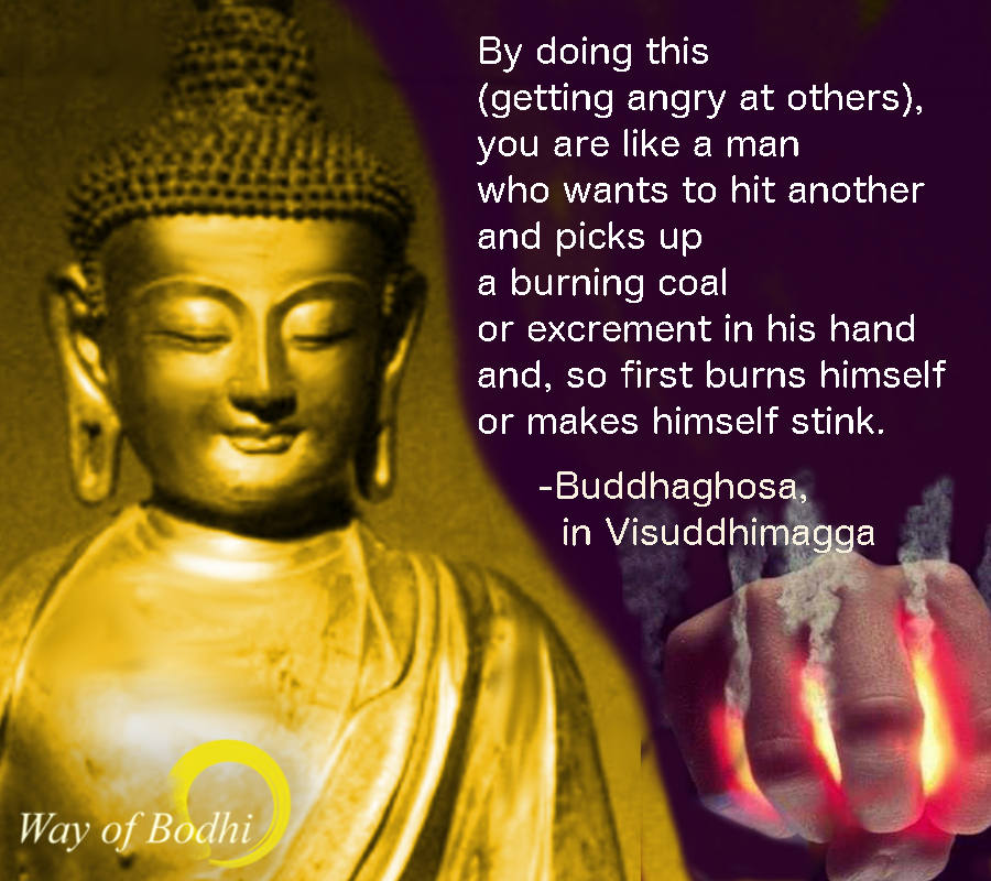 Dhamma Quote - Buddhaghosa's Vishuddhimagga on the fault of anger
