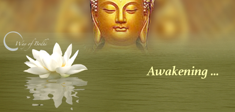 Qualities of awakening are naturally present in us