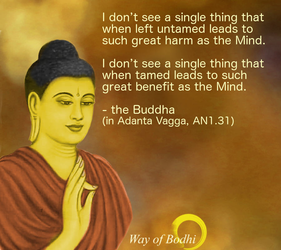 Buddha Quote - Taming Mind